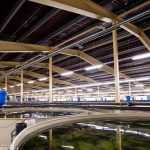FFAZ automatic fishfeeder RAS Recirculating Aquaculture System