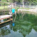 FFAZ automatic fishfeeder outdoor